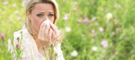Allergischer Schnupfen